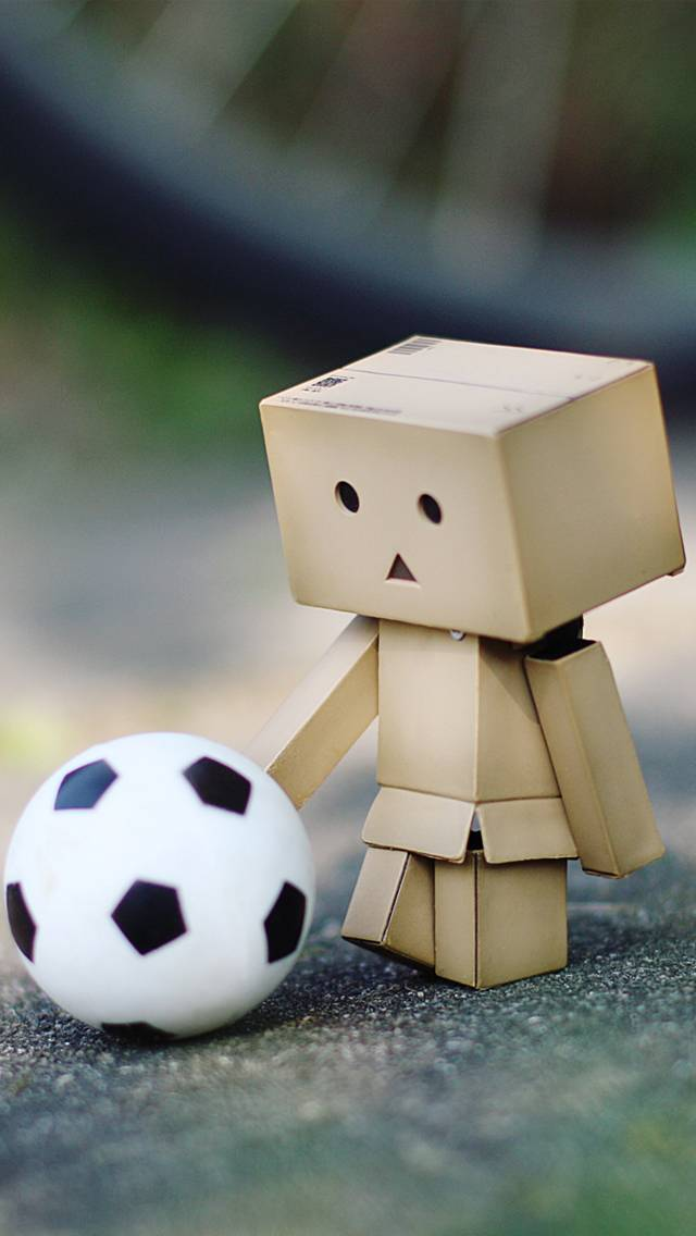 Danbo-football
