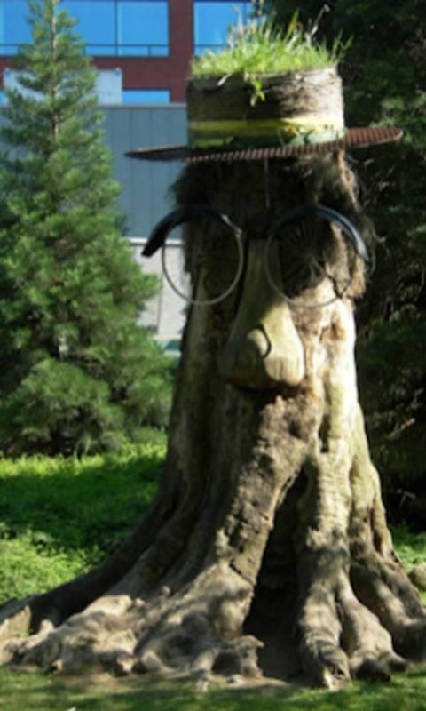 Funny Tree