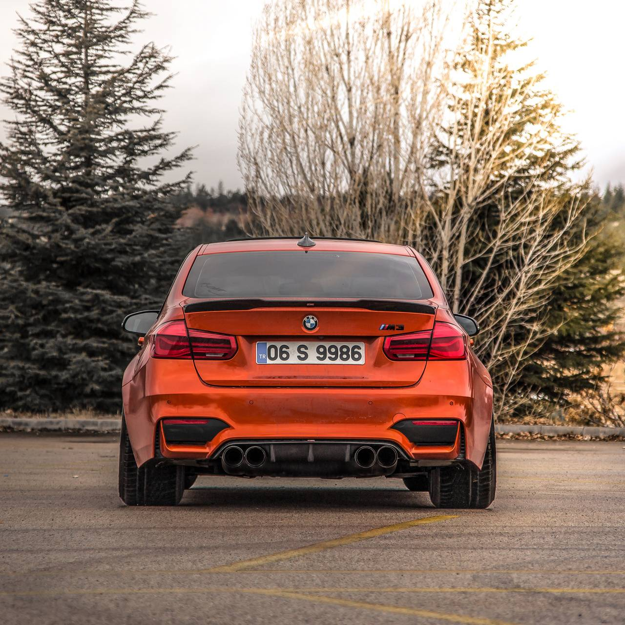 BMW m3 Rhino