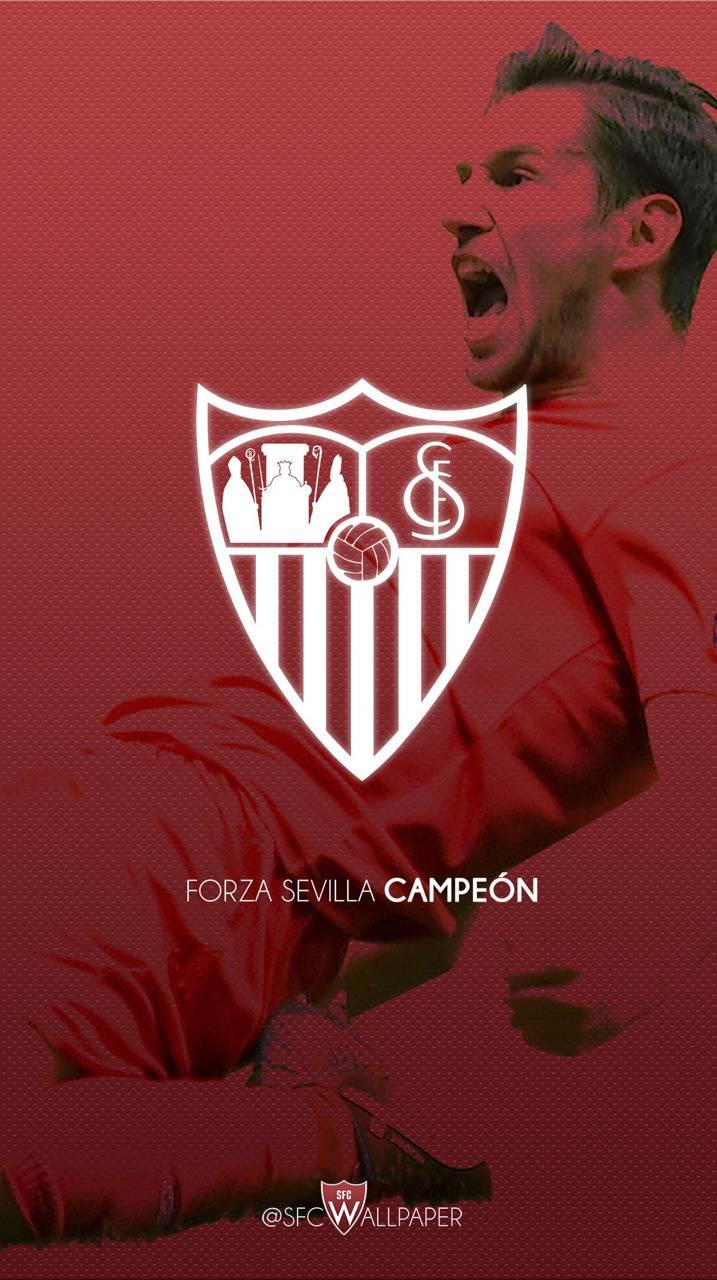 Krychowiak Sevilla