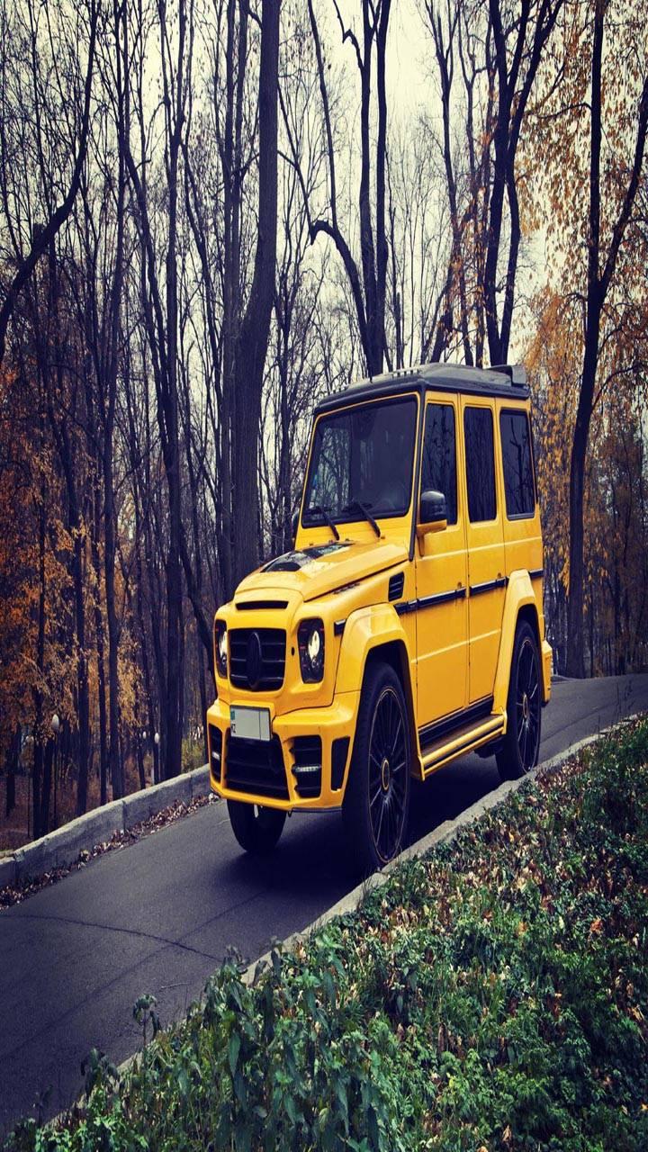 Mercedes yellow