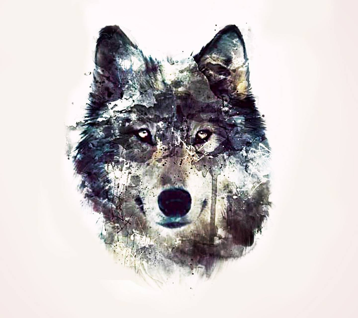 Wolf Wallpaper By Jonh2ce 74 Free On Zedge