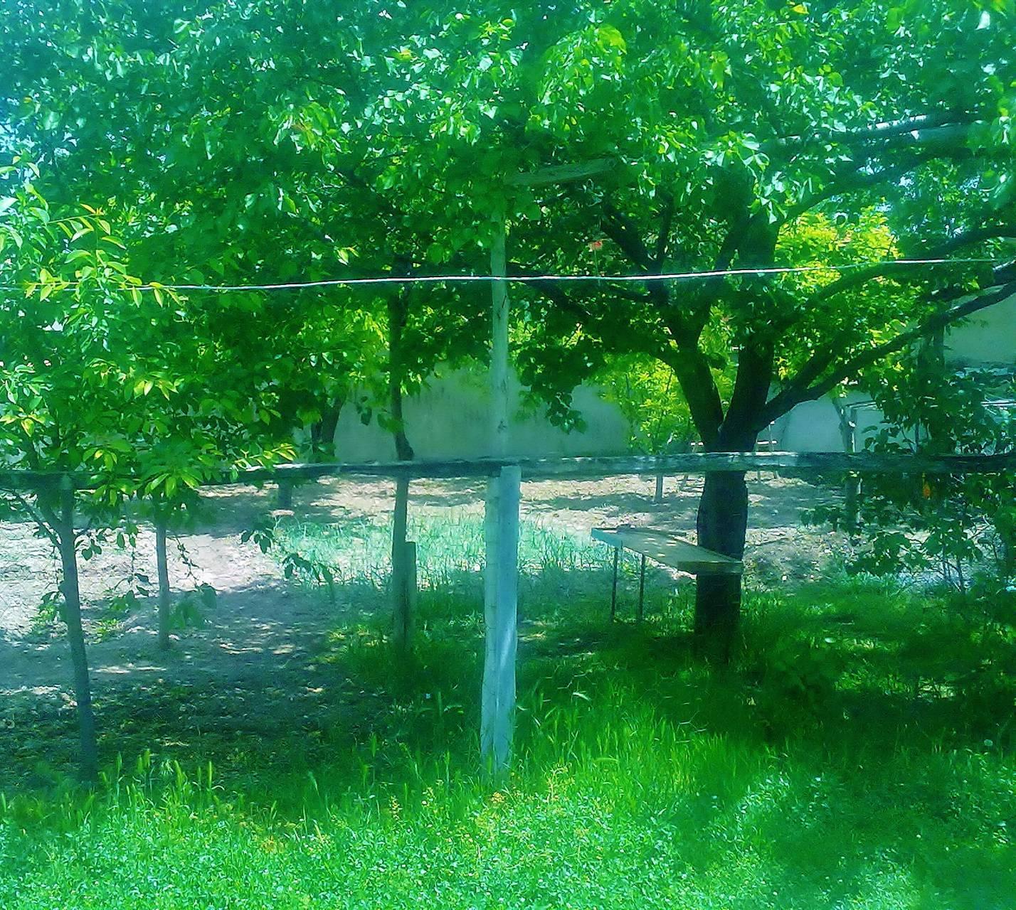 Green Garden-Bahce