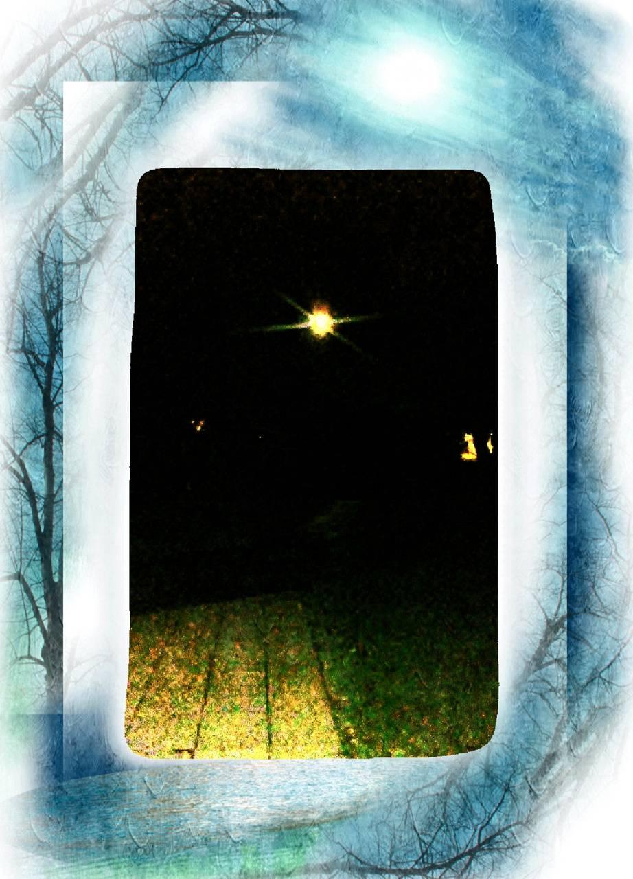 Moonlit fall eve