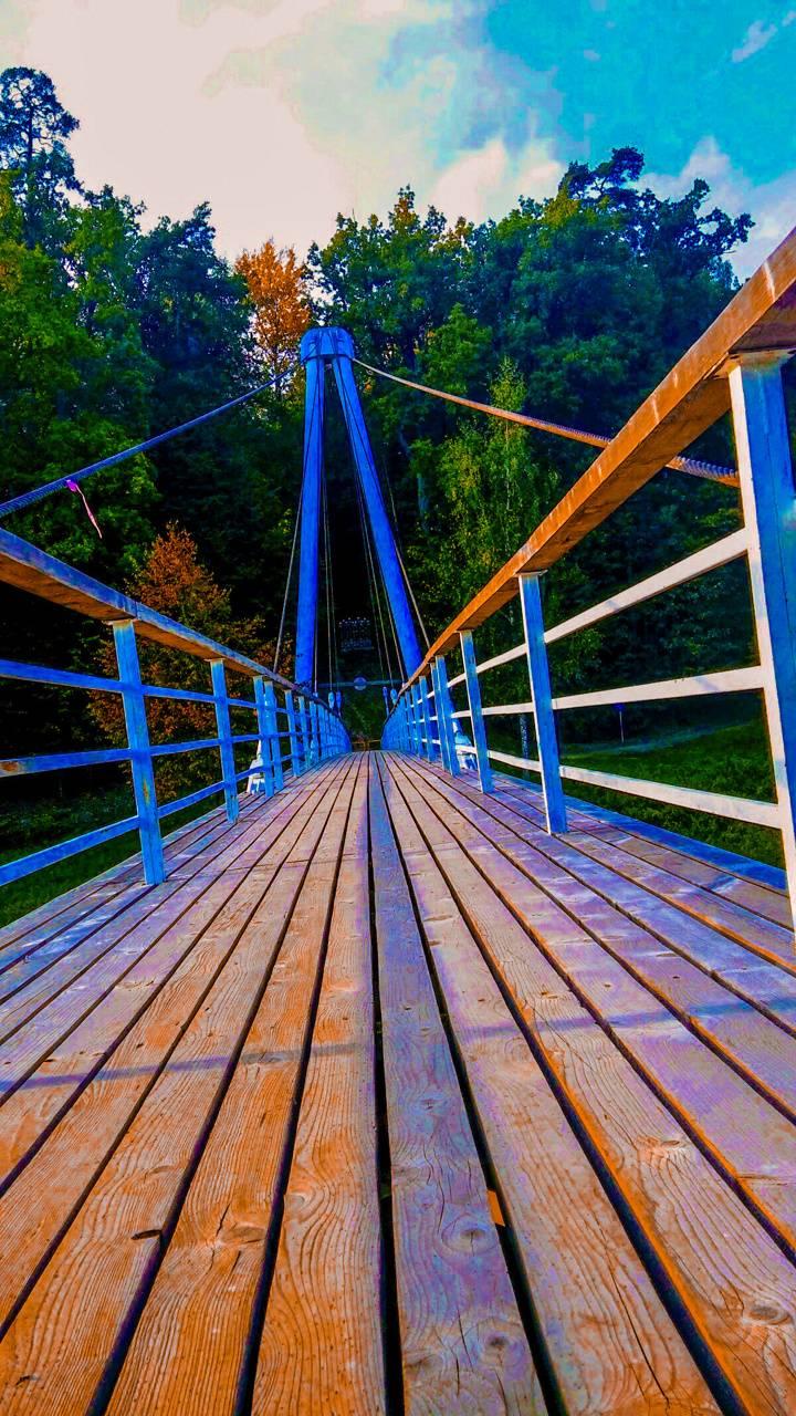 Bridge to Wonderland