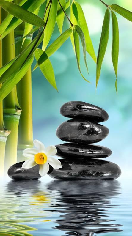 Zen Wallpapers - Free by ZEDGE™