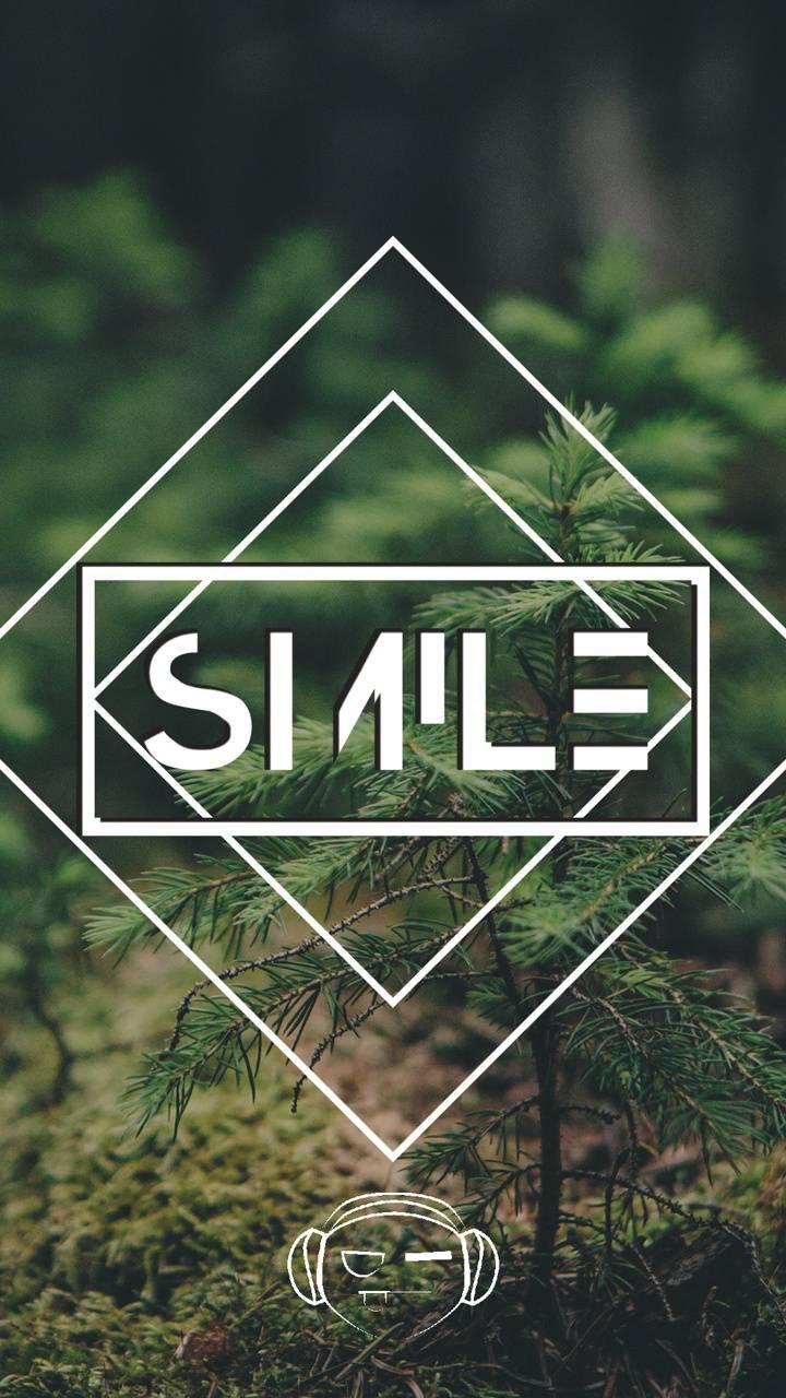 Pine Smile