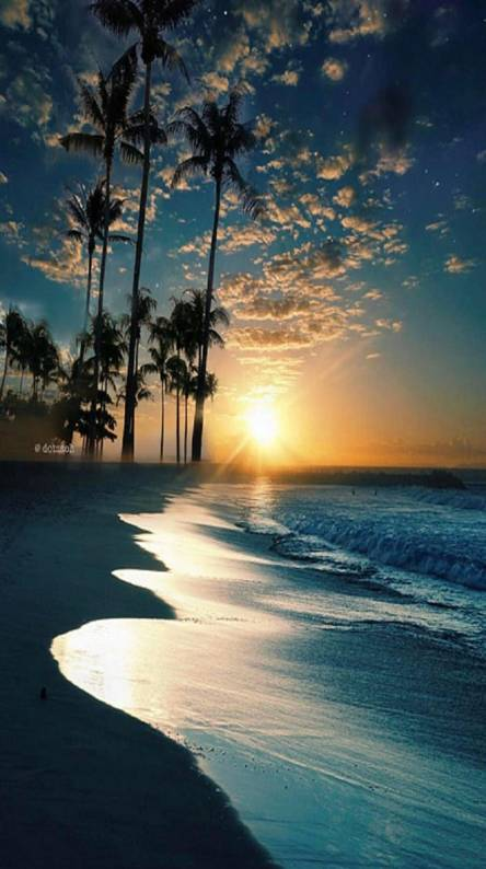 Beach Wallpaper Iphone Paradise