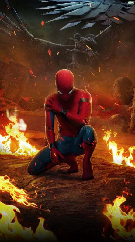 Spider man homecoming Wallpapers - Free by ZEDGE™