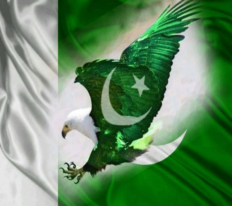 Flage nd Eagle