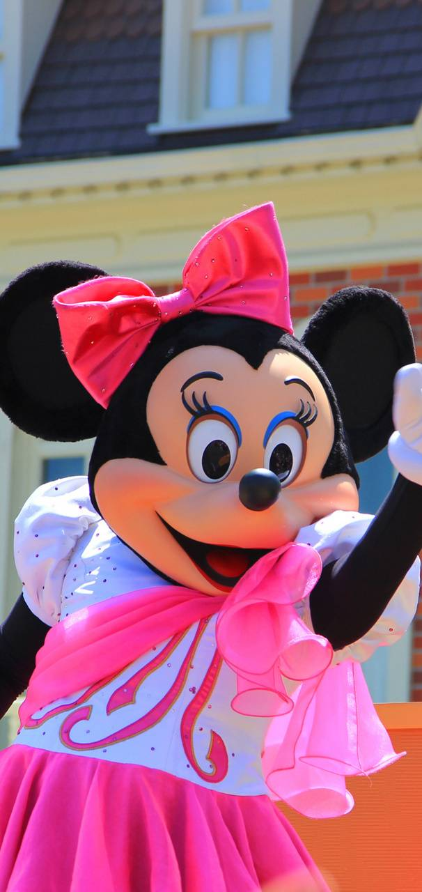 MInnie Mouse 40