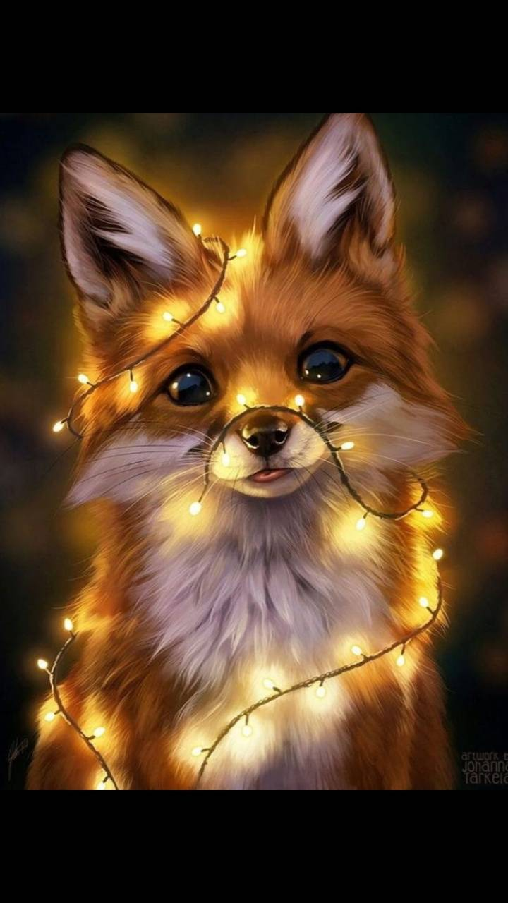 Fox Wallpaper By Shri Jal 32 Free On Zedge