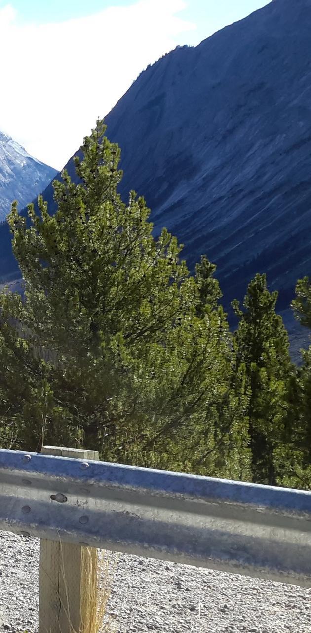 Banff Highway