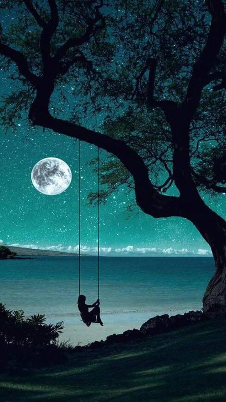 Noites em paz