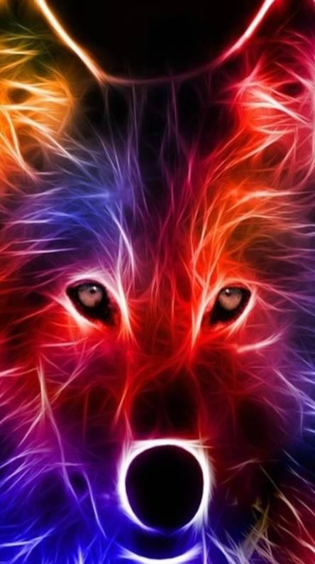 Shining Fox