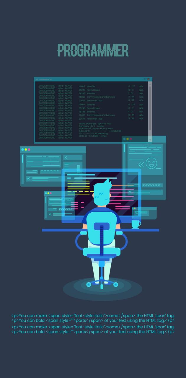 programmer
