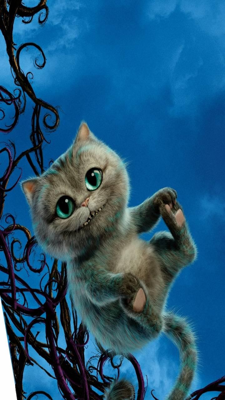 Cheshire Baby Cat