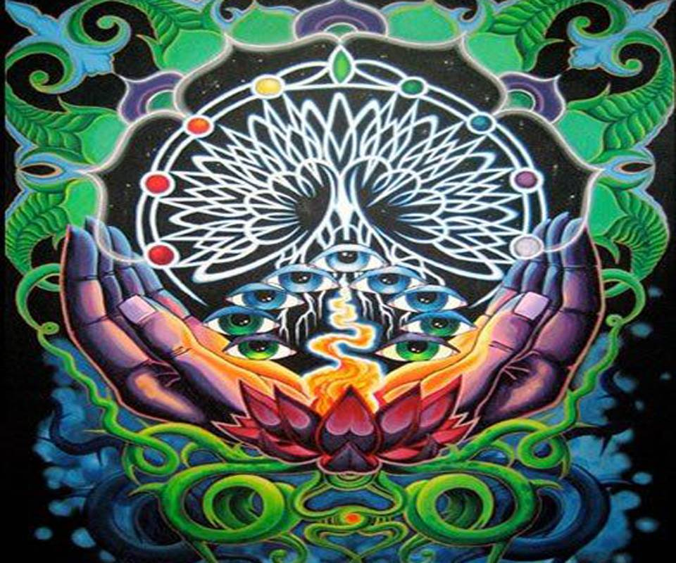 Gui Tree of Life