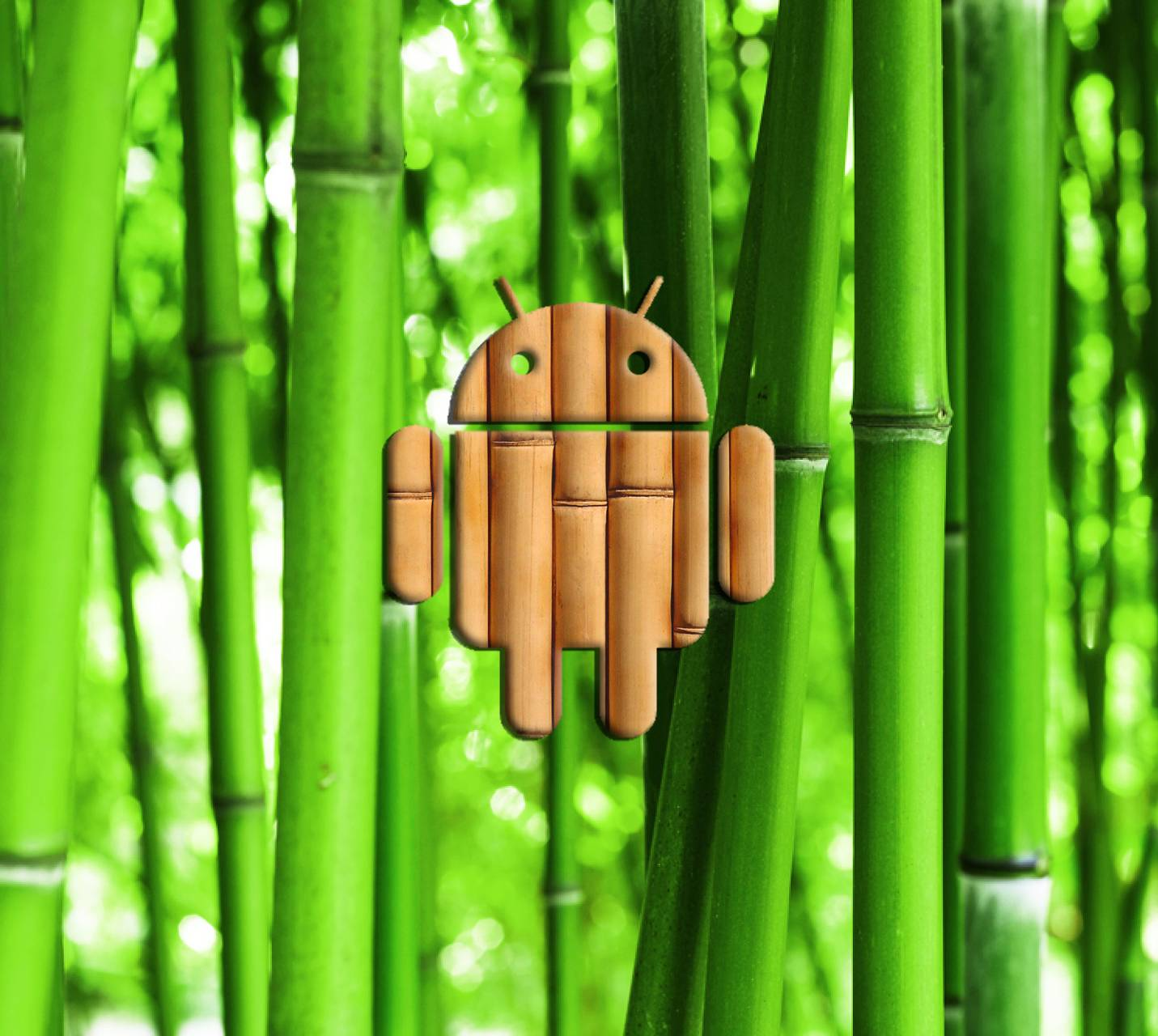 Android Bambus Wallpaper By Ghsam 5d Free On Zedge