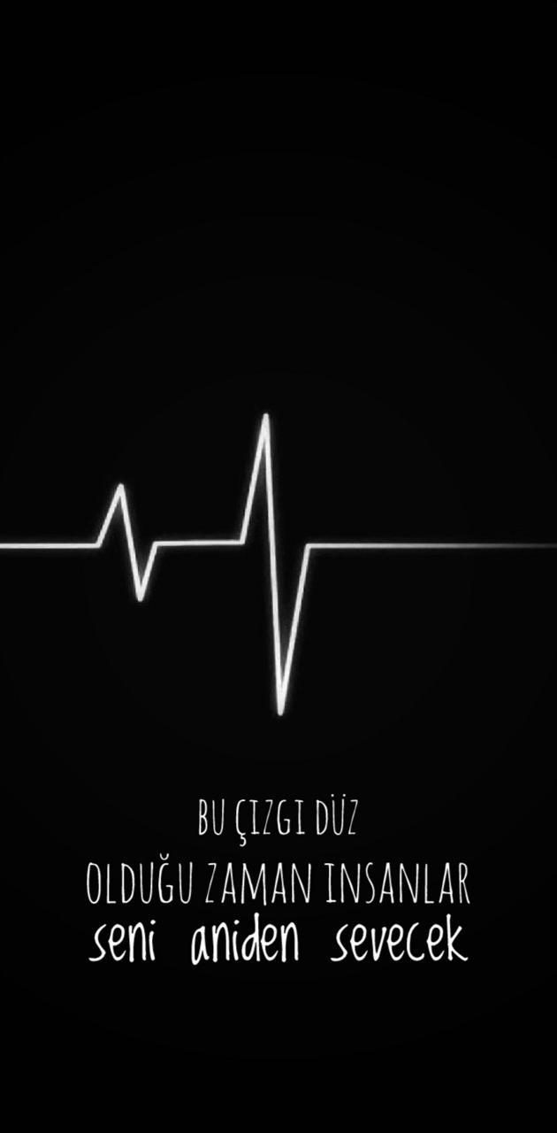 TanjuAkdogan