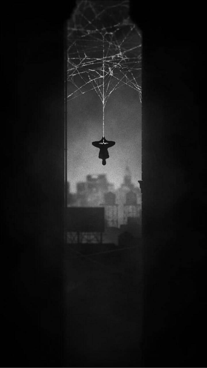 Spider Man Noir Wallpaper By Jonatas Rc 0b Free On Zedge