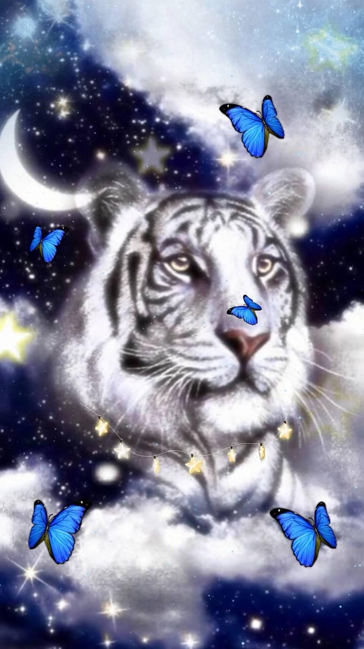 Dreamy Tiger 2