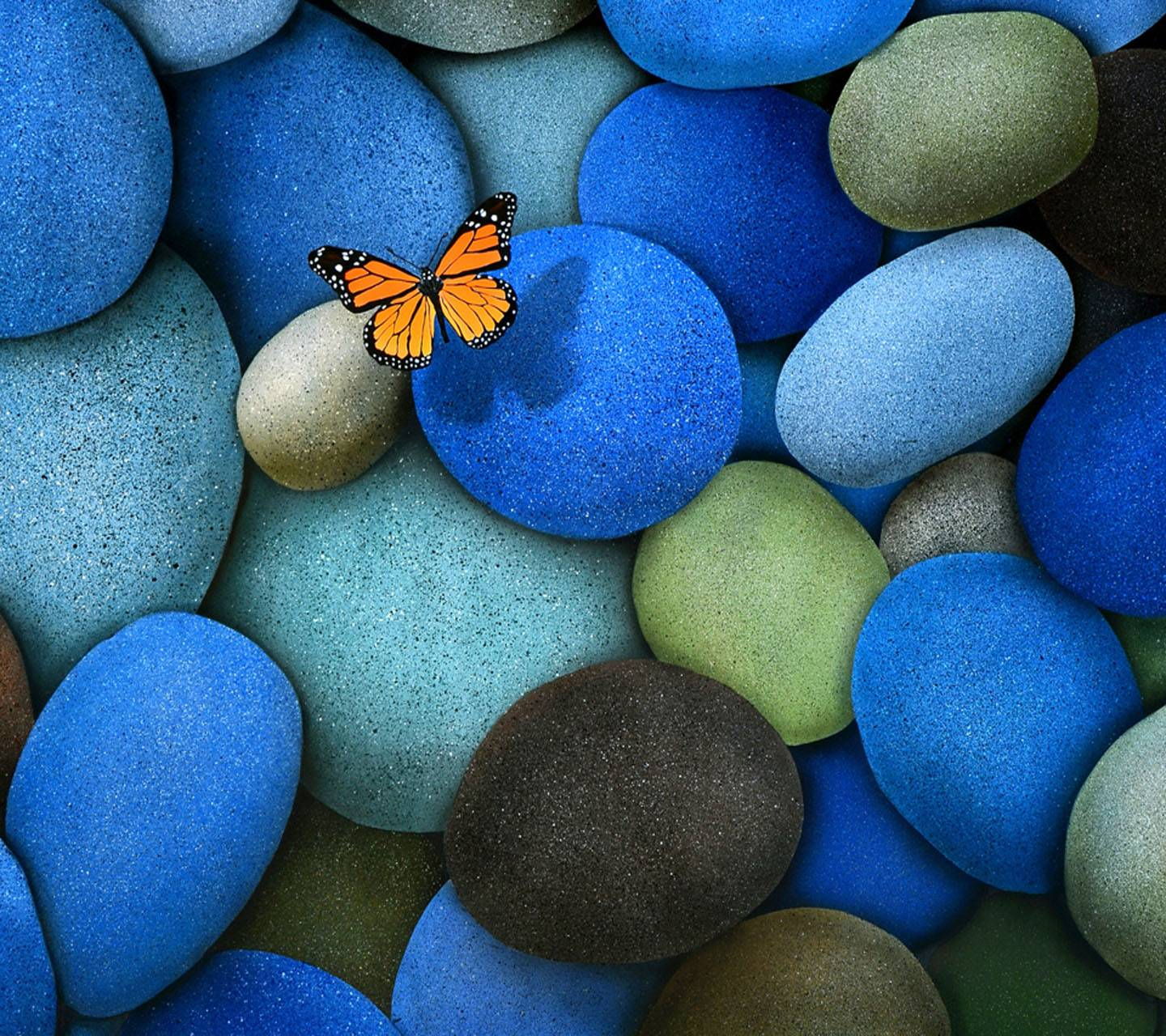 Butterfly And Stone