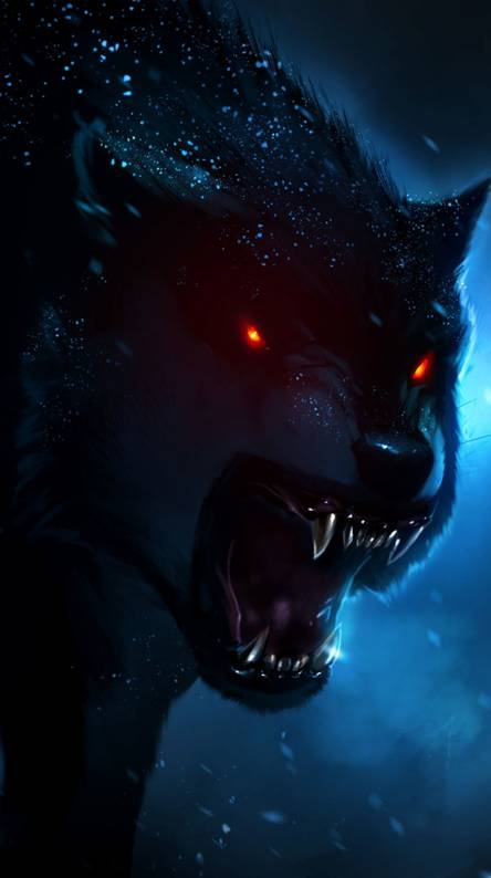 Angry Wolf Wallpapers Free By Zedge