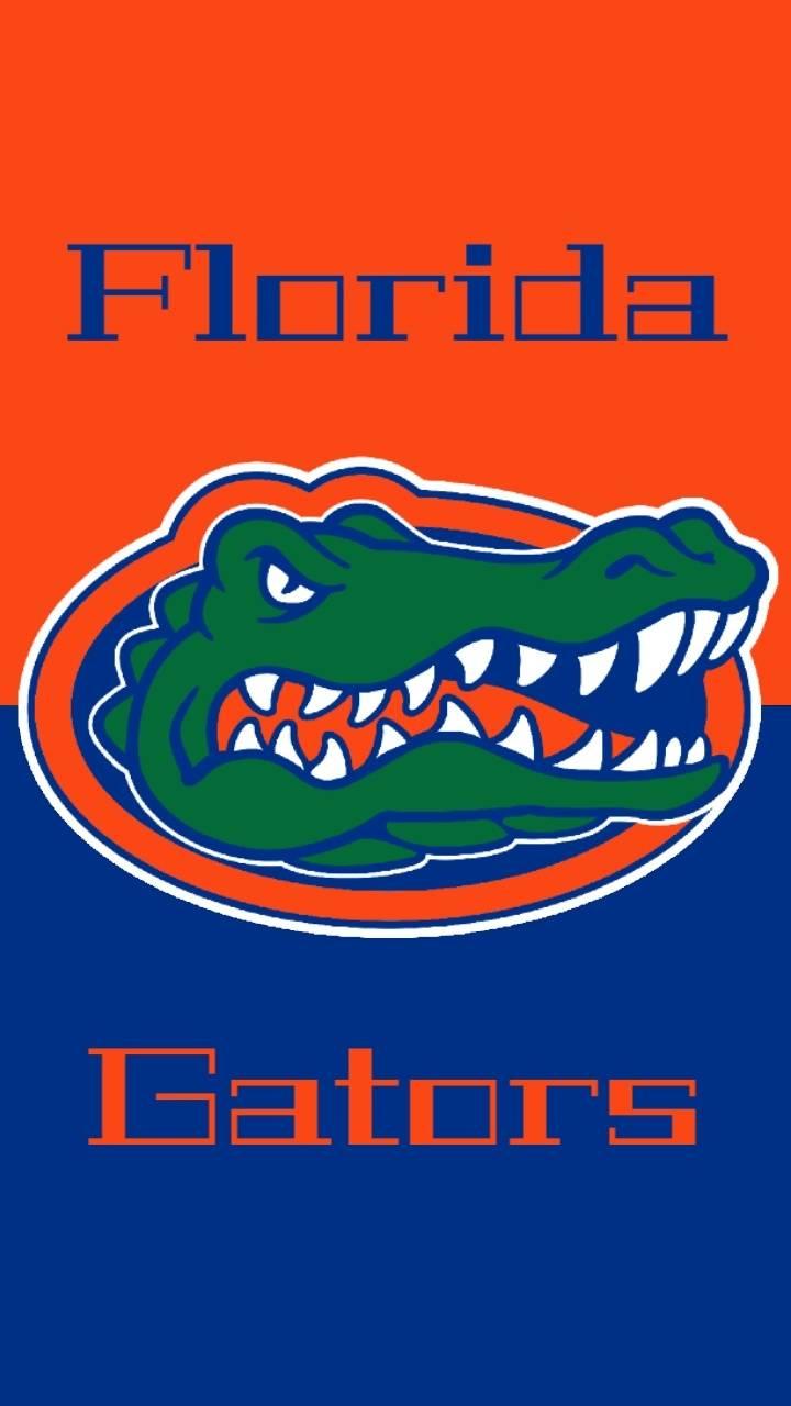 Florida Gators Wallpaper By Ttv Solarpls F4 Free On Zedge