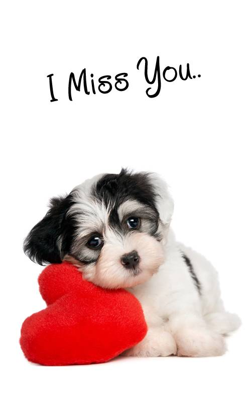 Puppy with Love