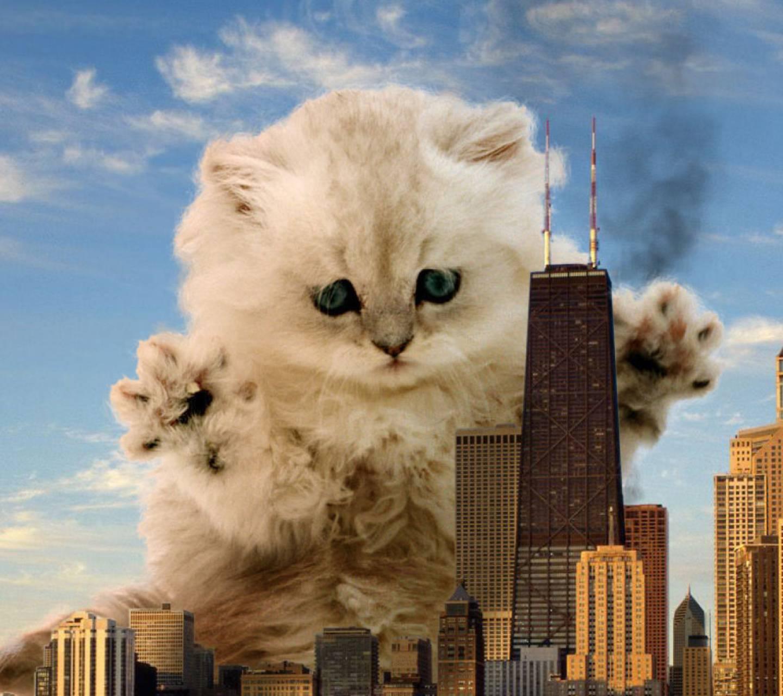 gatito monstruo lol
