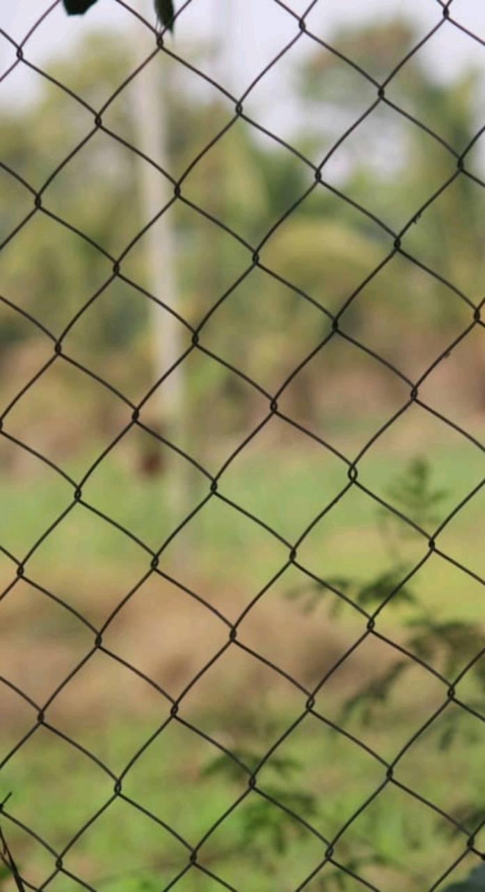 Net of nature