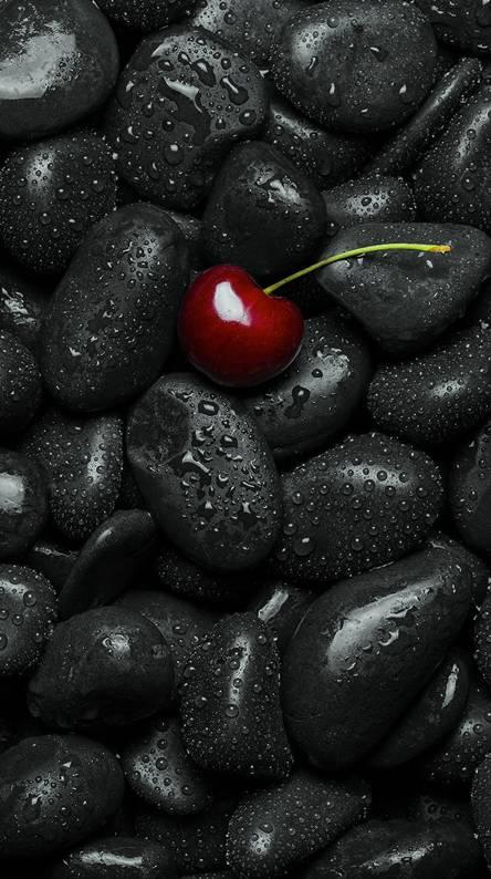 Black Stone Cherry Wallpapers