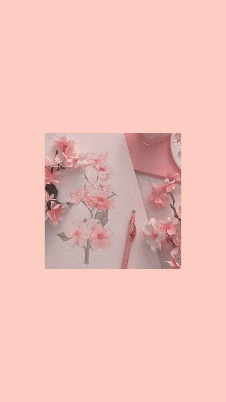 pink aesthetic wallpaper by orangezhen - a8 - Free on ZEDGE™