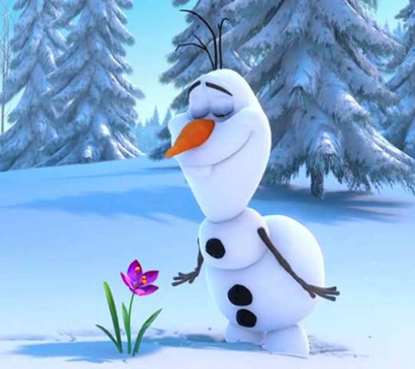 Olaf Wallpapers: Olaf Flower Wallpaper By SlLVER