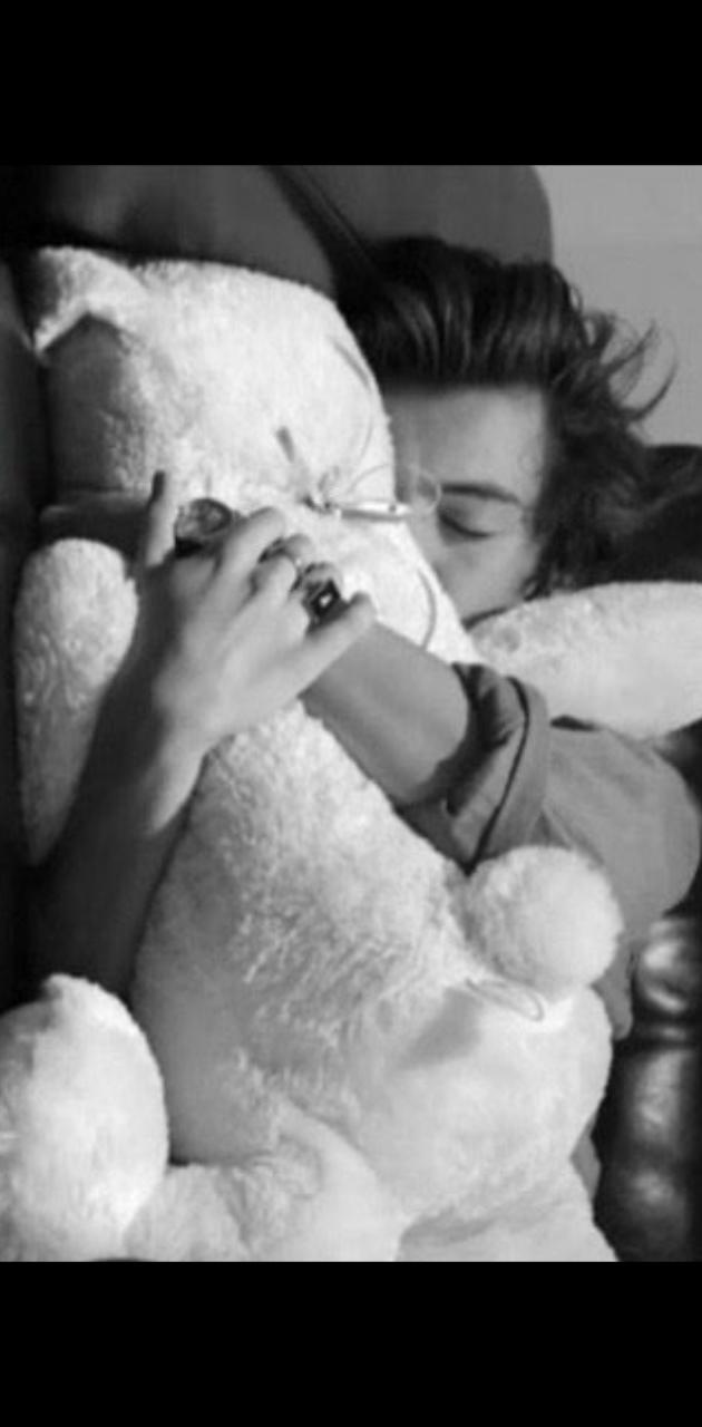 Harry Styles Teddy