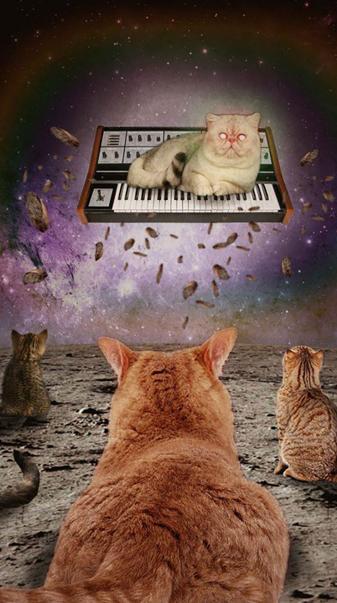 Cat Synth God