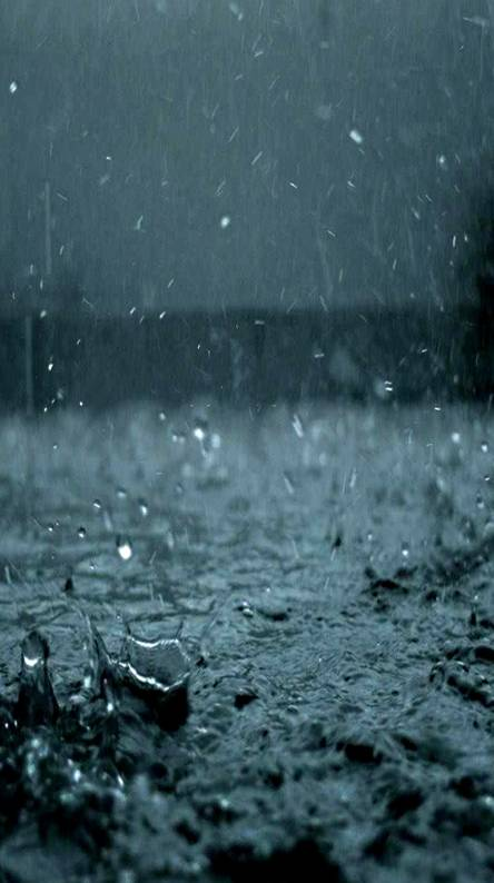 Rain Wallpapers Free By Zedge