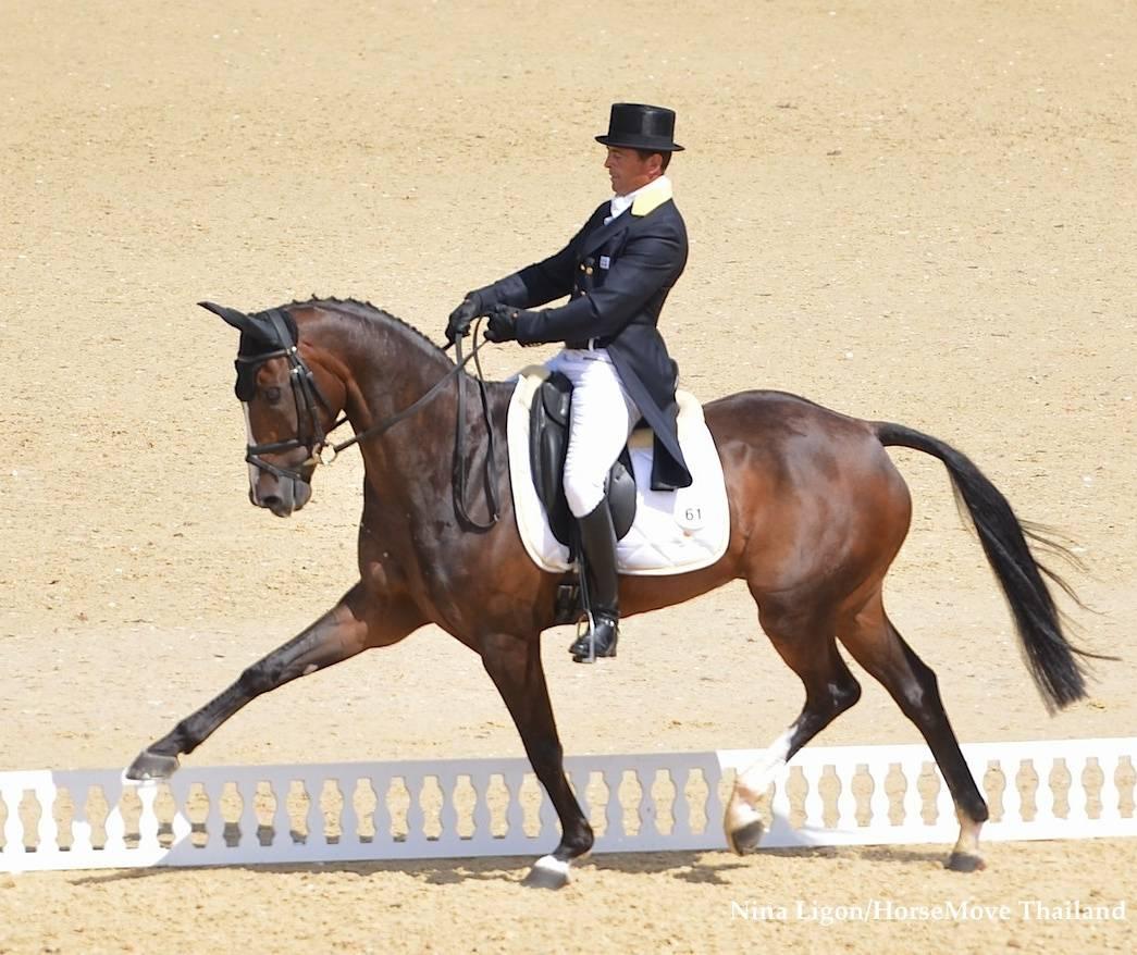 Olympics Dressage