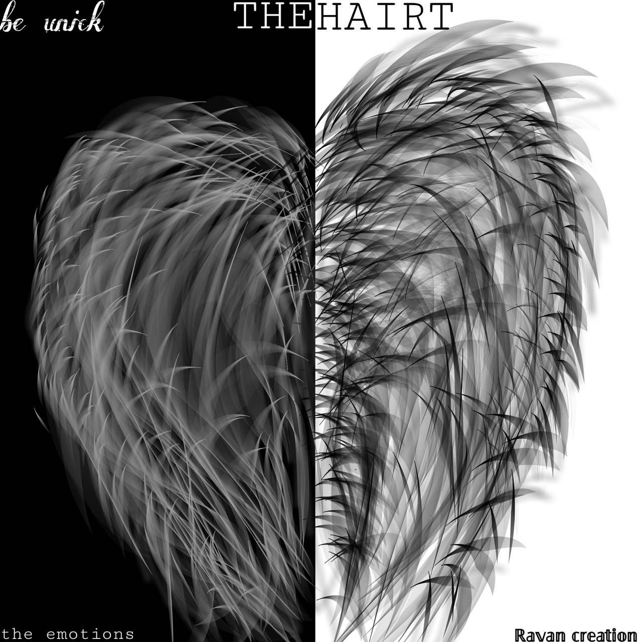 The hairt