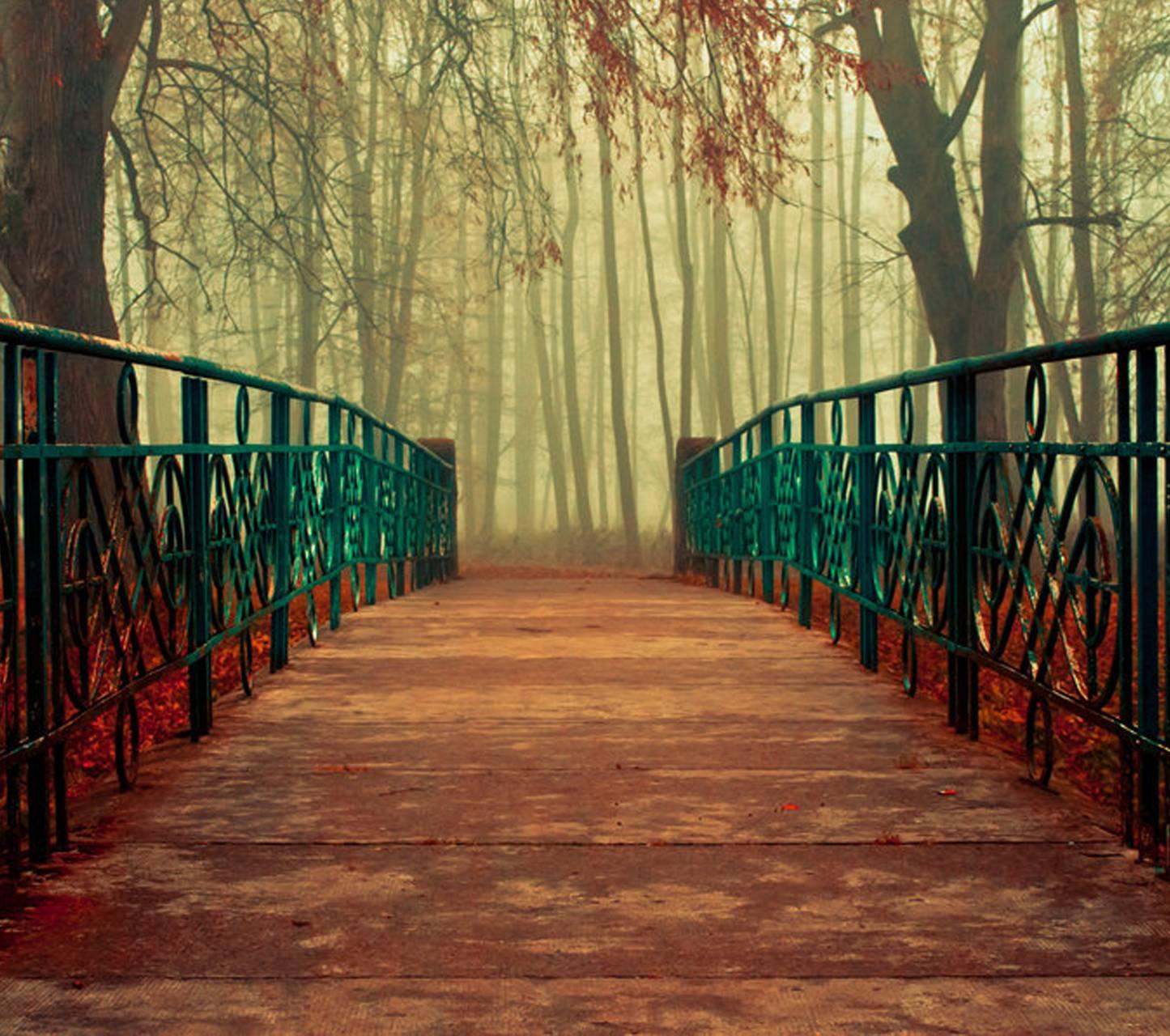 Deliverance Bridge