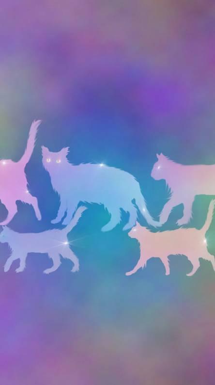 Cats Cats Cats 2