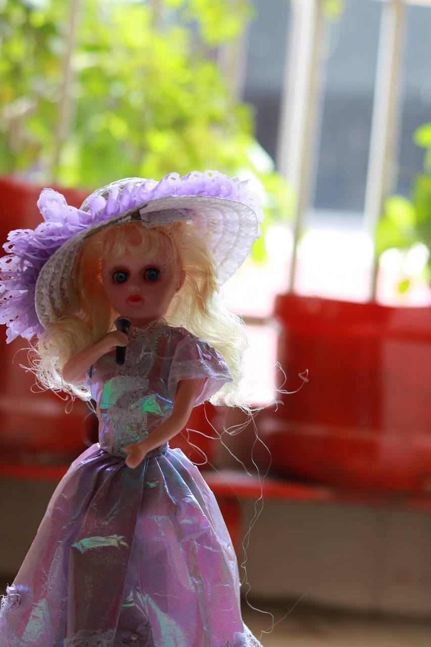 Birbie girl toy