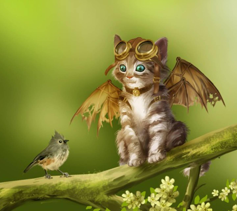 kitten aviator