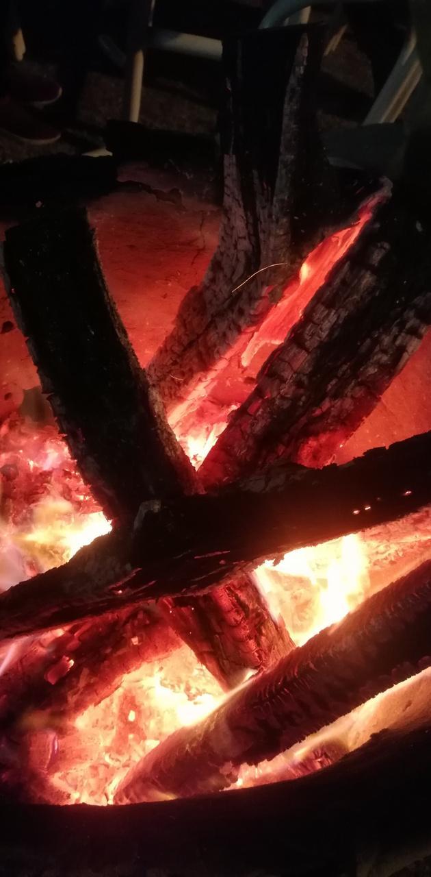 Sticks on lava