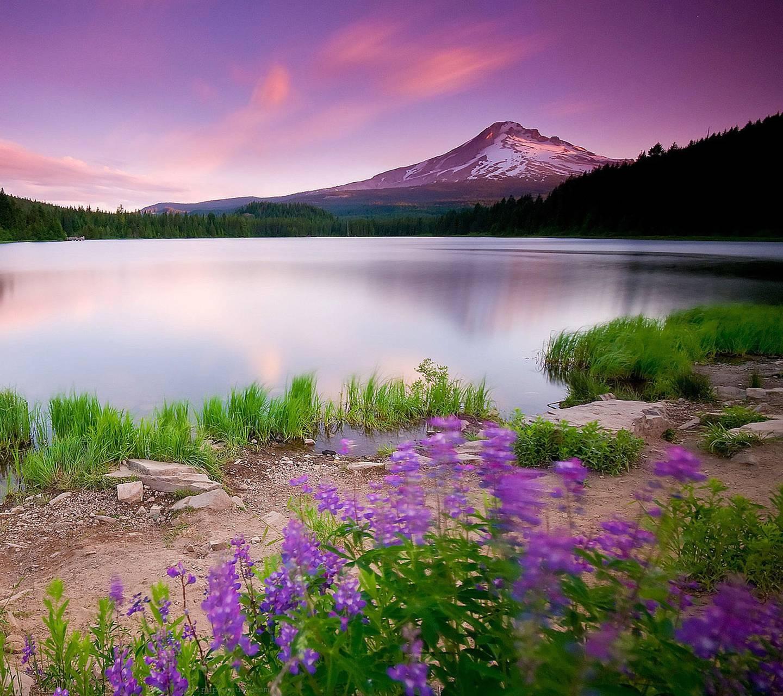 Wonterful Landscape