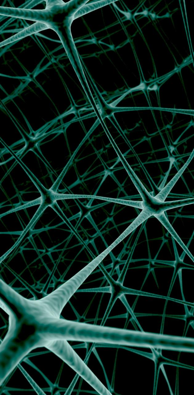 Net Neuron