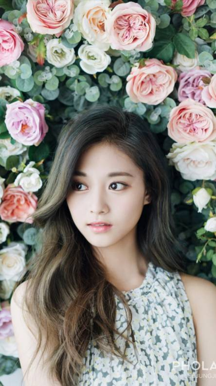 Twice Chou Tzuyu Wallpaper