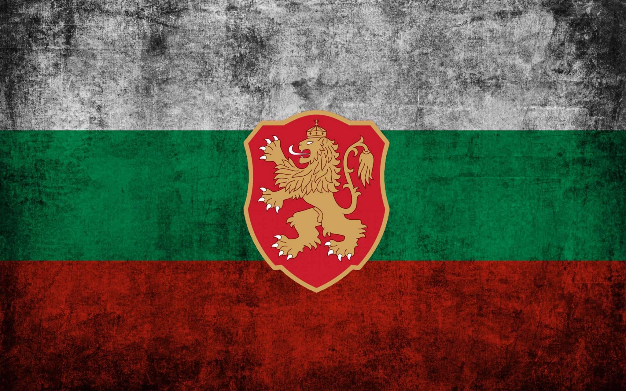 Bulgarian Team
