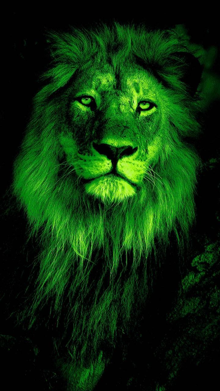 Lion Criskeen